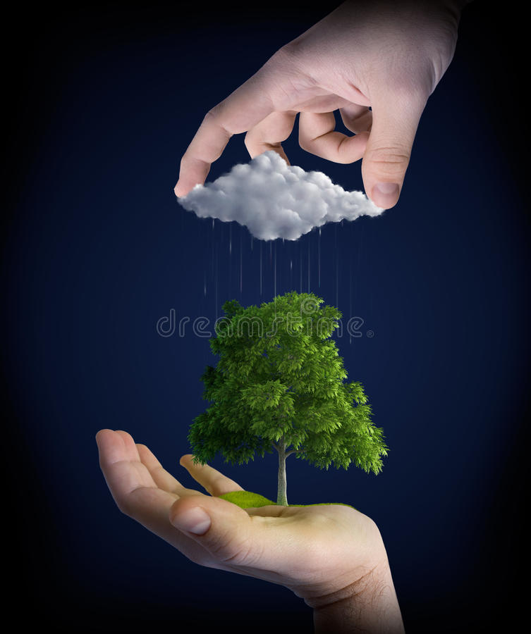 Nature in man hands royalty free stock photos
