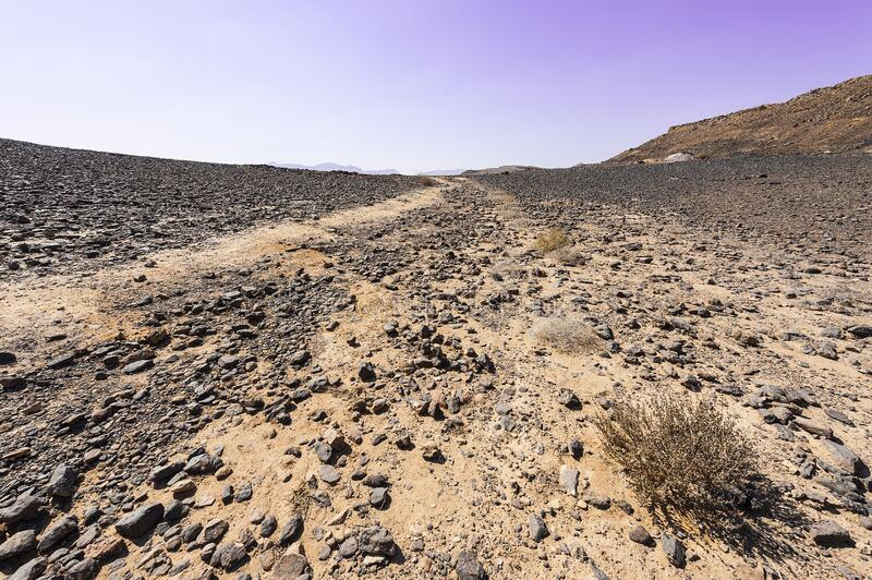 Nature of the Middle East. Rocky hills of the Negev Desert in Israel. Breathtaking landscape and nature of the Middle East royalty free stock image