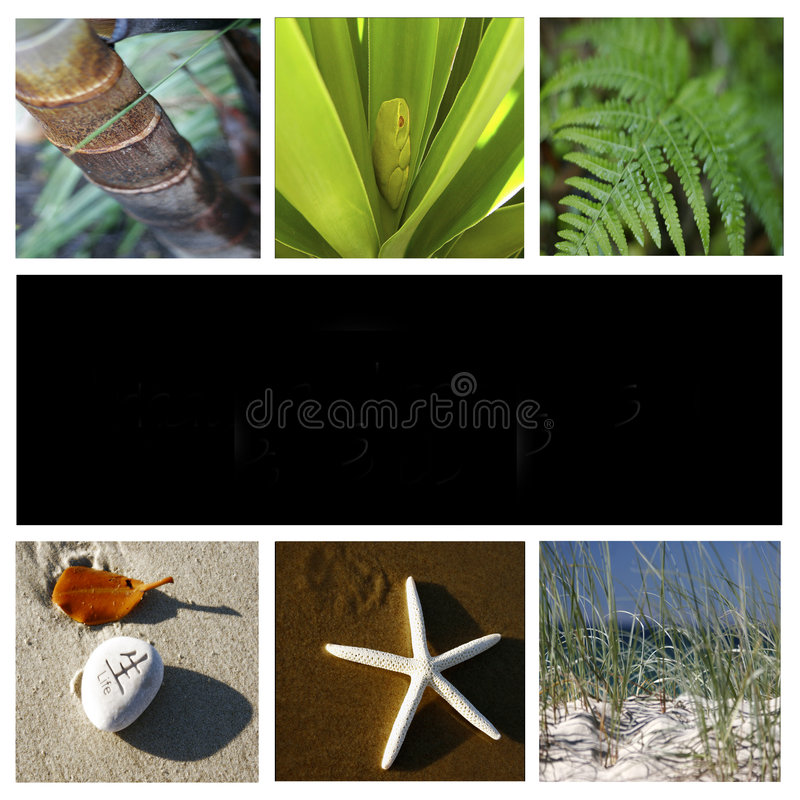 Nature montage. Montage made of six different nature images with space for text in the middle royalty free stock photography