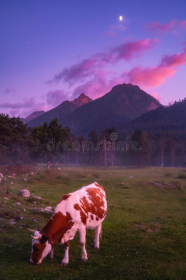 Nature mountains landscape at evening stock photos