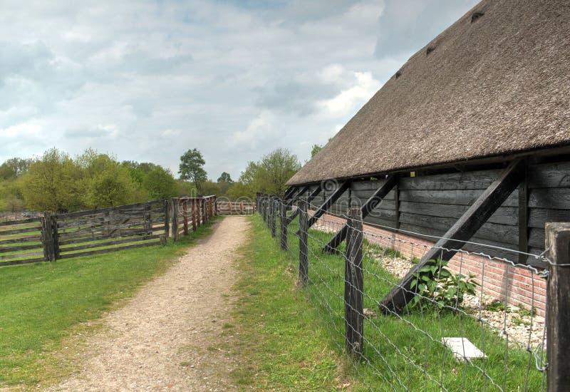 Nature néerlandaise typique une journée de printemps photos stock