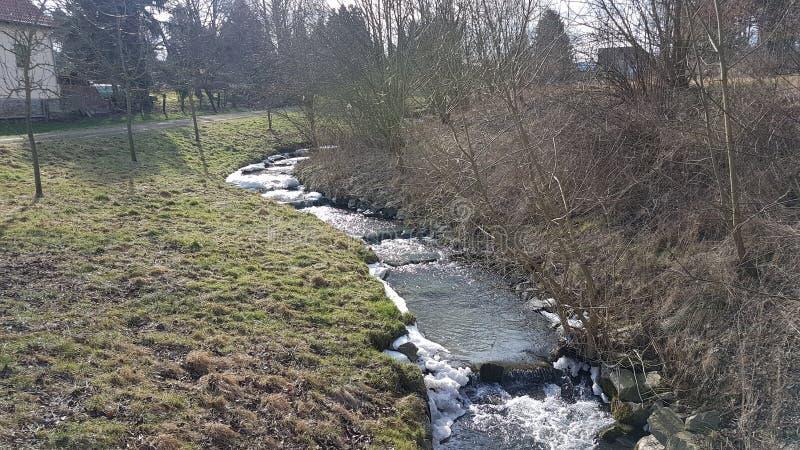 Nature. Spring, Frühling royalty free stock photo