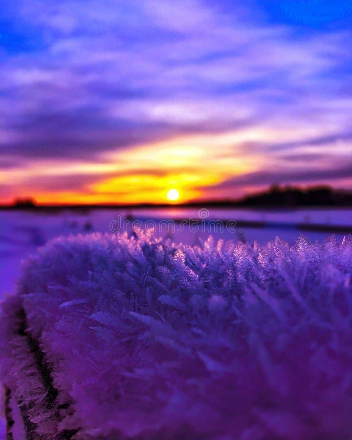 Frozen sunset stock image