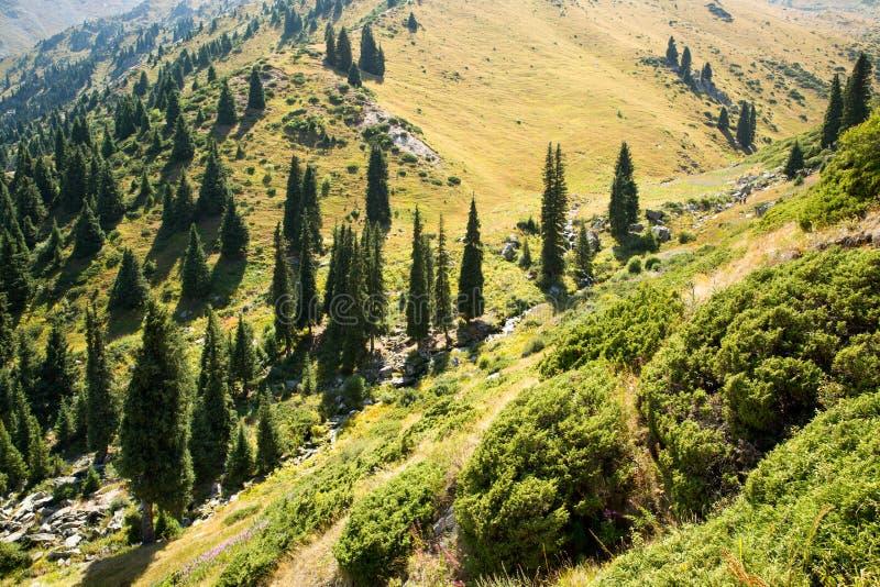Nature near Big Almaty Lake, Tien Shan Mountains in Almaty, Kazakhstan stock photo