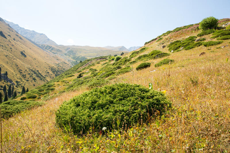 Nature near Big Almaty Lake, Tien Shan Mountains in Almaty, Kazakhstan royalty free stock photos