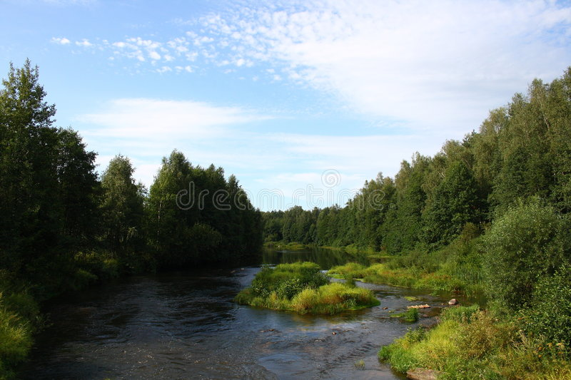 The nature near to the river in Russia stock image
