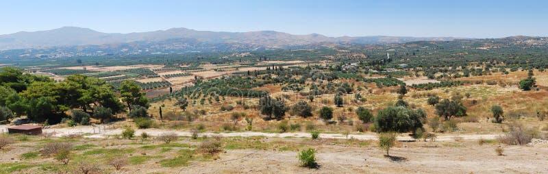 Nature, olive trees, mountains on Crete royalty free stock photos