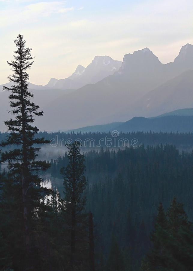 Nature' paleta de s fotografia de stock royalty free