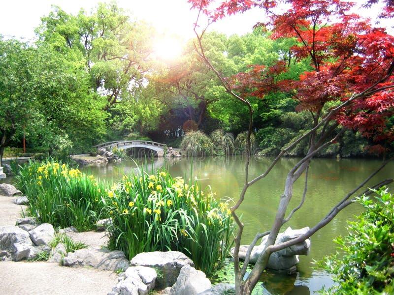 Nature park scenery, Hangzhou. Nature park scenery in spring, Hangzhou, Xihu lake, China, plants and water royalty free stock image