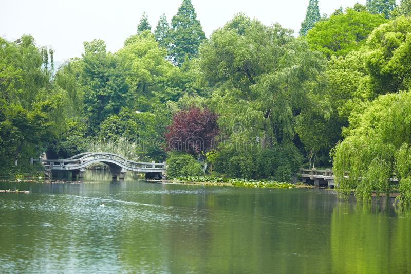 Nature park scenery, Hangzhou. Nature park scenery in spring, Hangzhou, Xihu lake, China, plants and water stock images