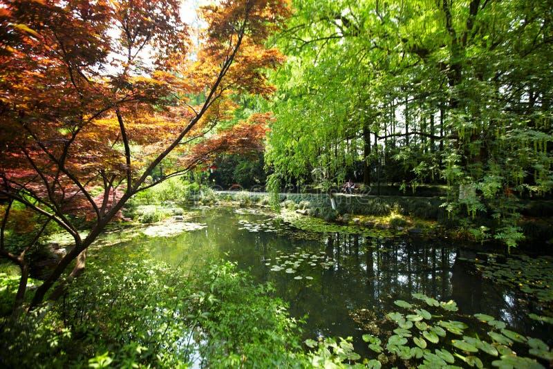 Nature park scenery, Hangzhou. Nature park scenery in spring, Hangzhou, Xihu lake, China, plants and water stock image