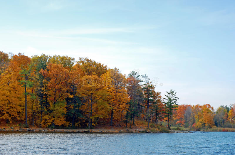 Nature path beside a lake. And autumn colored forest stock image