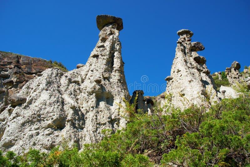 Nature phenomenon and nature miracle Stone Mushrooms rocks in Al. Tai mountains near river Chulyshman. Siberia, Russia royalty free stock photos