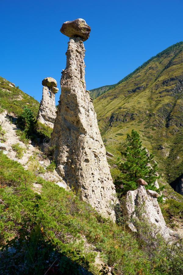 Nature phenomenon and nature miracle Stone Mushrooms rocks in Al. Tai mountains near river Chulyshman. Siberia, Russia royalty free stock photography