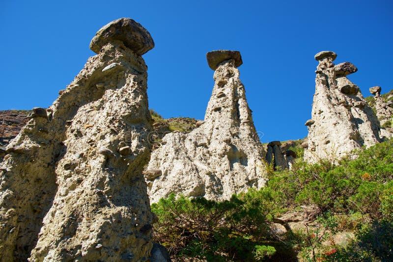 Nature phenomenon and nature miracle Stone Mushrooms rocks in Al. Tai mountains near river Chulyshman. Siberia, Russia stock photography