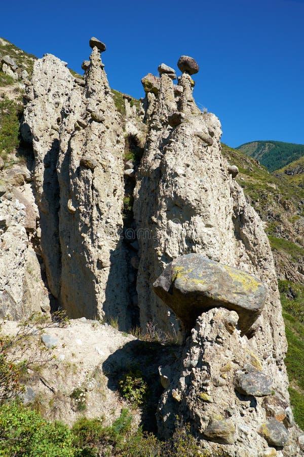 Nature phenomenon and nature miracle Stone Mushrooms rocks in Al. Tai mountains near river Chulyshman. Siberia, Russia royalty free stock image