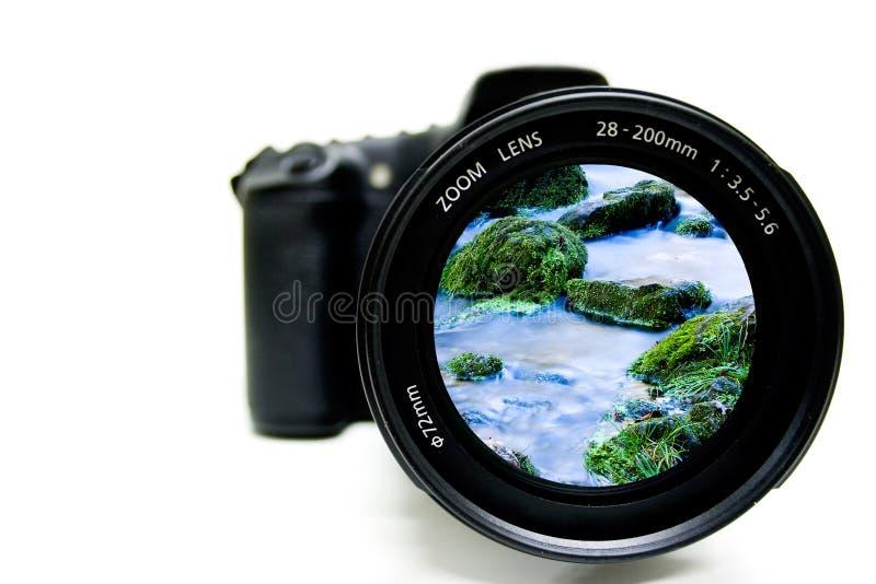 Nature Photography stock photos