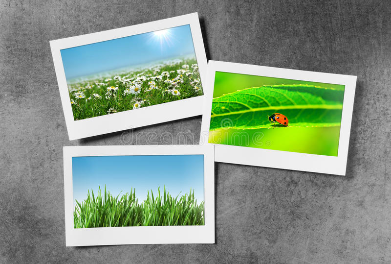 Download Nature Photos In  Frames Stock Photos - Image: 22780303