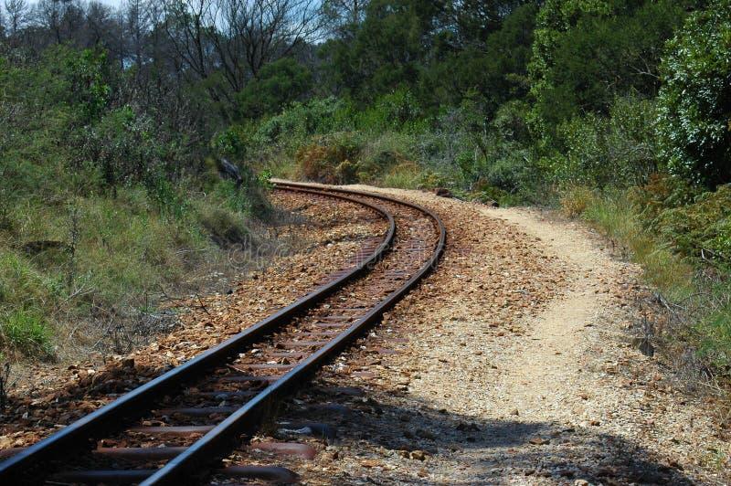 nature railroad tracks стоковое изображение rf