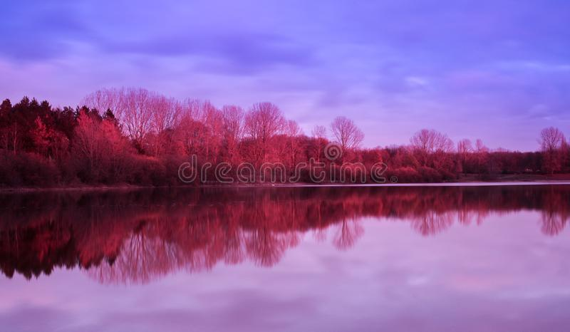 Nature reflected in the lake royalty free stock images