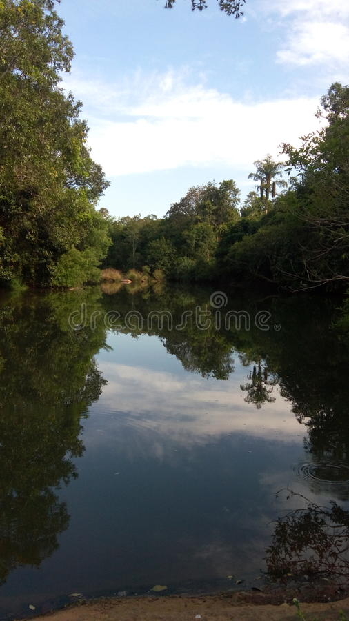 Nature reflection royalty free stock image