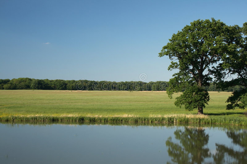 Nature reserve. Area in Saxony-Anhalt, Germany stock images