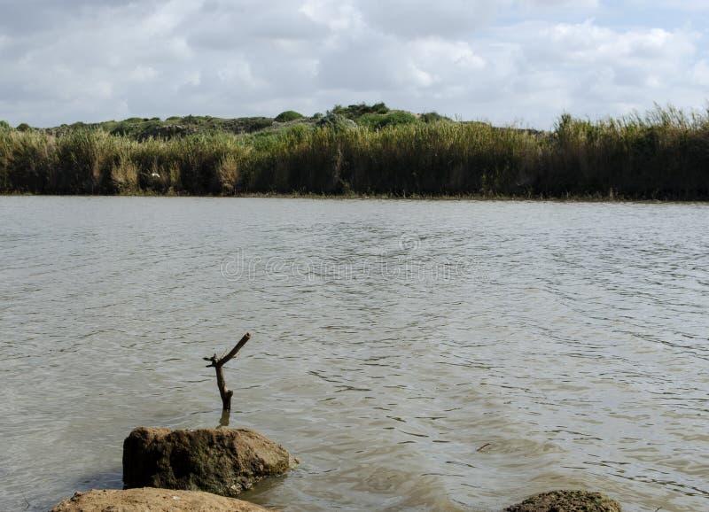 Nature reserve lake stock photo