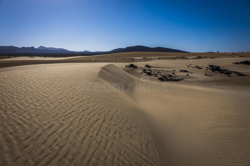 The Nature reserve, Park Natural, Corralejo, Fuerteventura, Canary Islands, Spain. Sand patterns after wind and rain on the Nature reserve, Park Natural royalty free stock photo