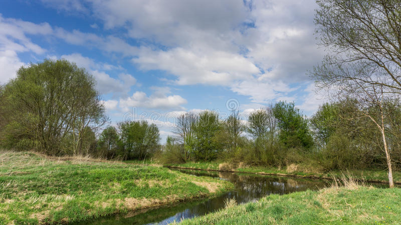 Nature reserve with small river. At sunshine royalty free stock photo