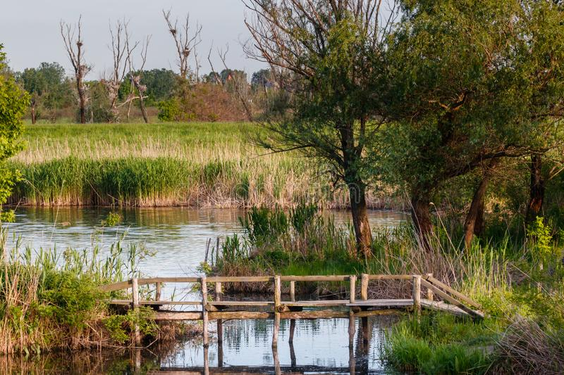 Small wooden bridge on the lake, authentic wooden bridge on the lake royalty free stock photography