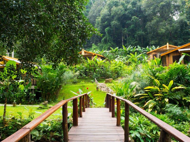 Nature Resorts thailand. Chiangmai Thailand is rnbeautiful royalty free stock photo