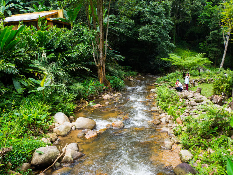 Nature Resorts thailand. Chiangmai Thailand is rnbeautiful royalty free stock images