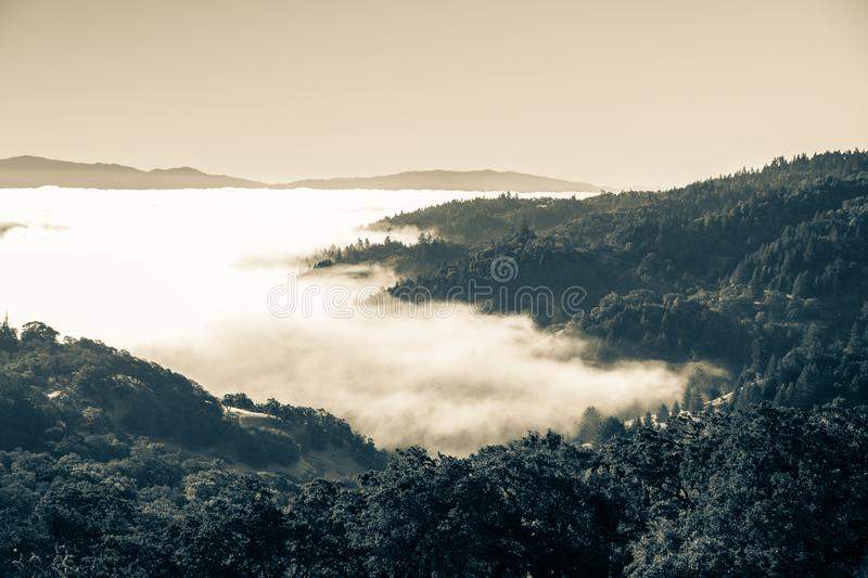 The nature and rest in northern California stock images