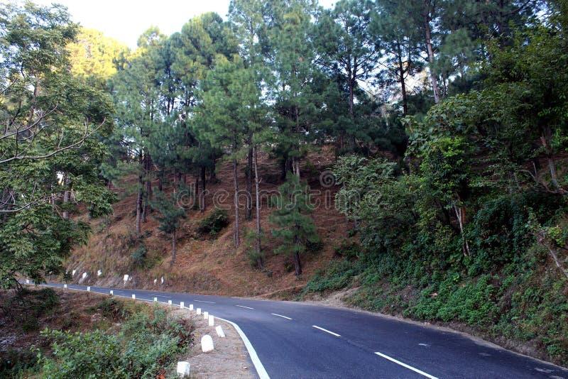 Nature Rishikesh photo libre de droits