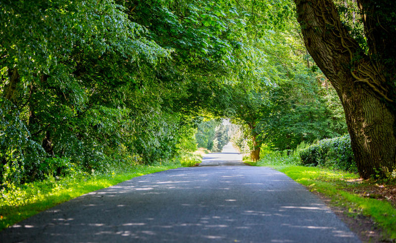 Nature road royalty free stock images
