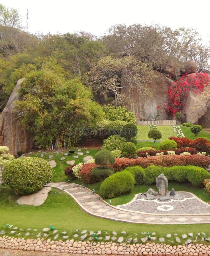Nature romantique de jardin de parc de beaux bonsaïs japonais d'arbre photos libres de droits