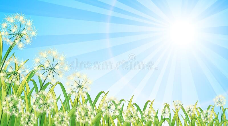 Nature scene background with flowers and bright sky stock photo