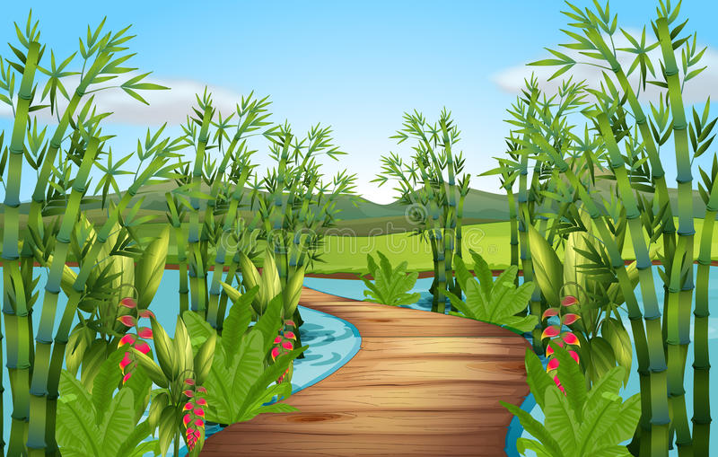 Nature scene with bamboos along the bridge vector illustration