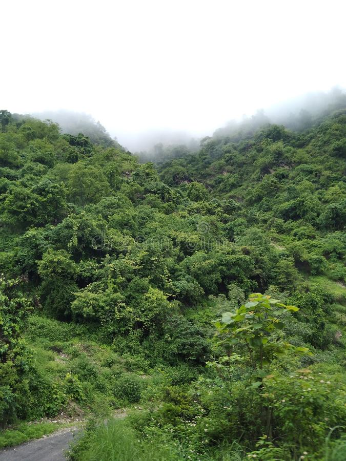 Nature scenery with cloudy sky. Heaven of the earth. Greenery nature of india stock images