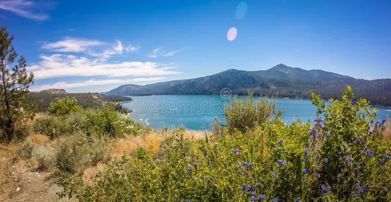 Nature scenics around spokane river washington stock photos