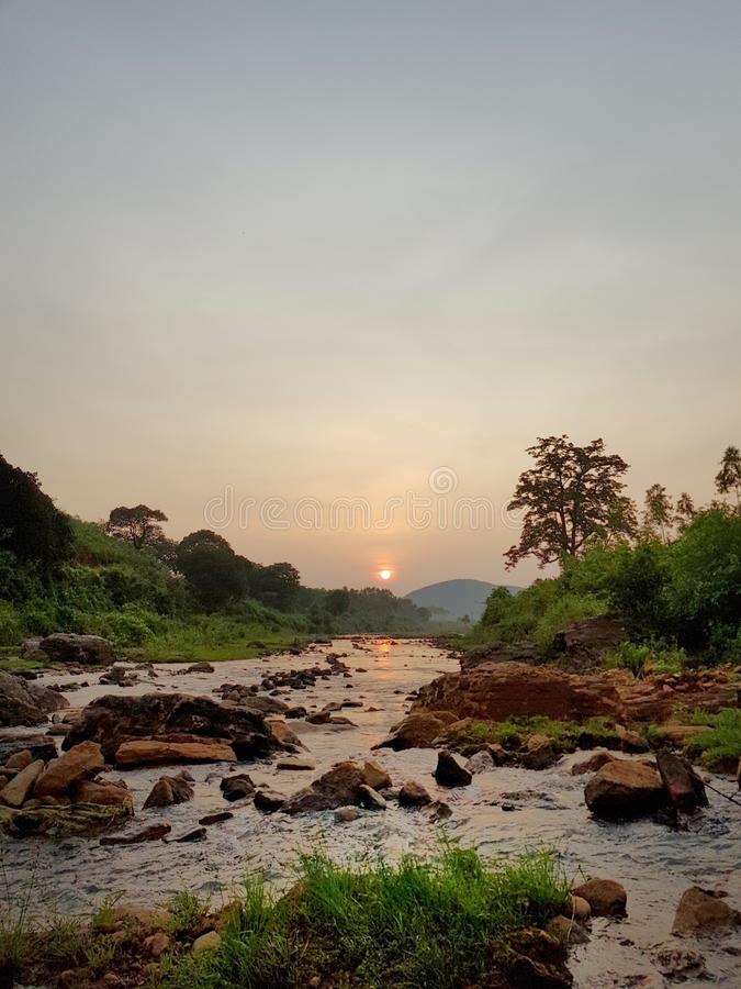 Nature, Sky, Tree, Morning royalty free stock photos