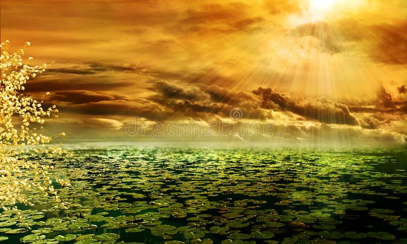 Nature, Sky, Water, Atmosphere royalty free stock photos