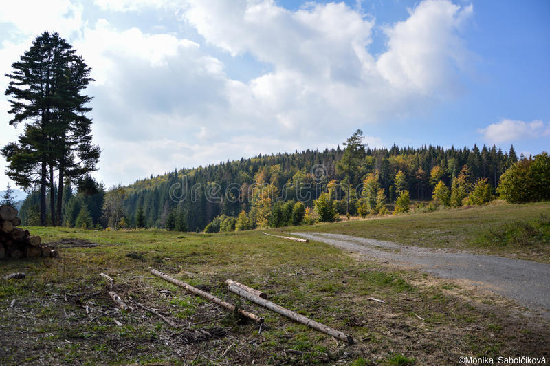 Nature IN Slovakia stock images