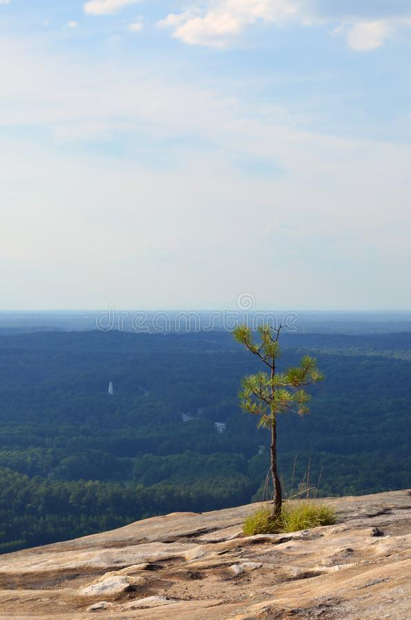 The nature of stone mountain royalty free stock image