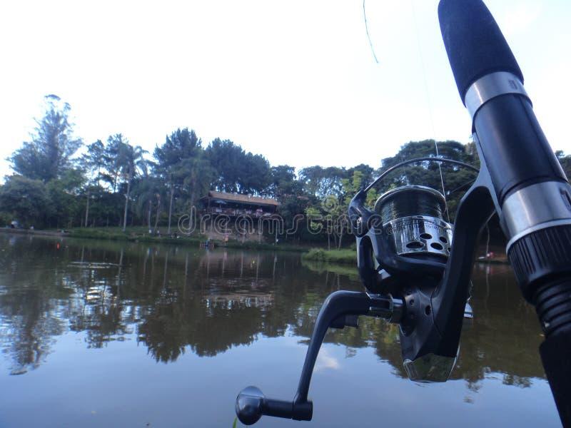 Nature sur le lac images libres de droits