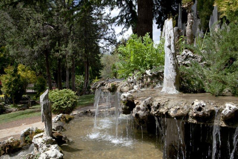 Nature sur le lac Ohrid macedonia photos libres de droits