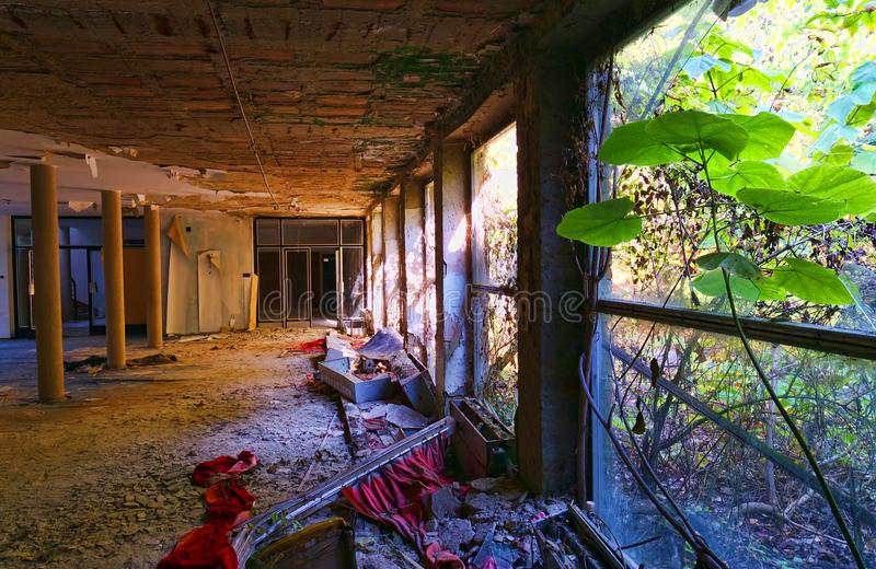 Nature Taking Over Abandoned Building stock image