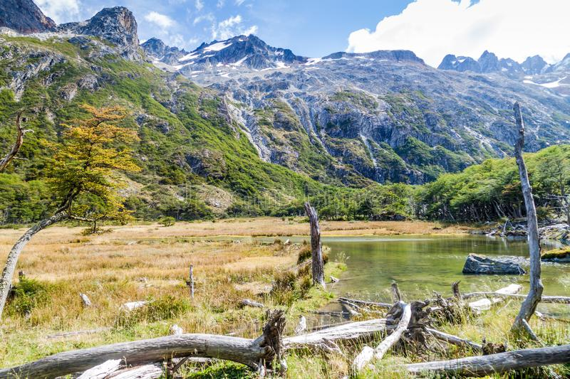 Nature in Tierra del Fuego royalty free stock photography