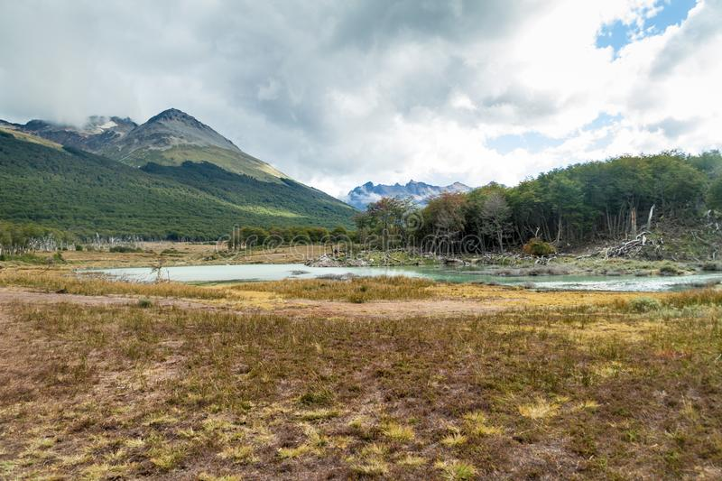 Nature in Tierra del Fuego, Argenti stock photo