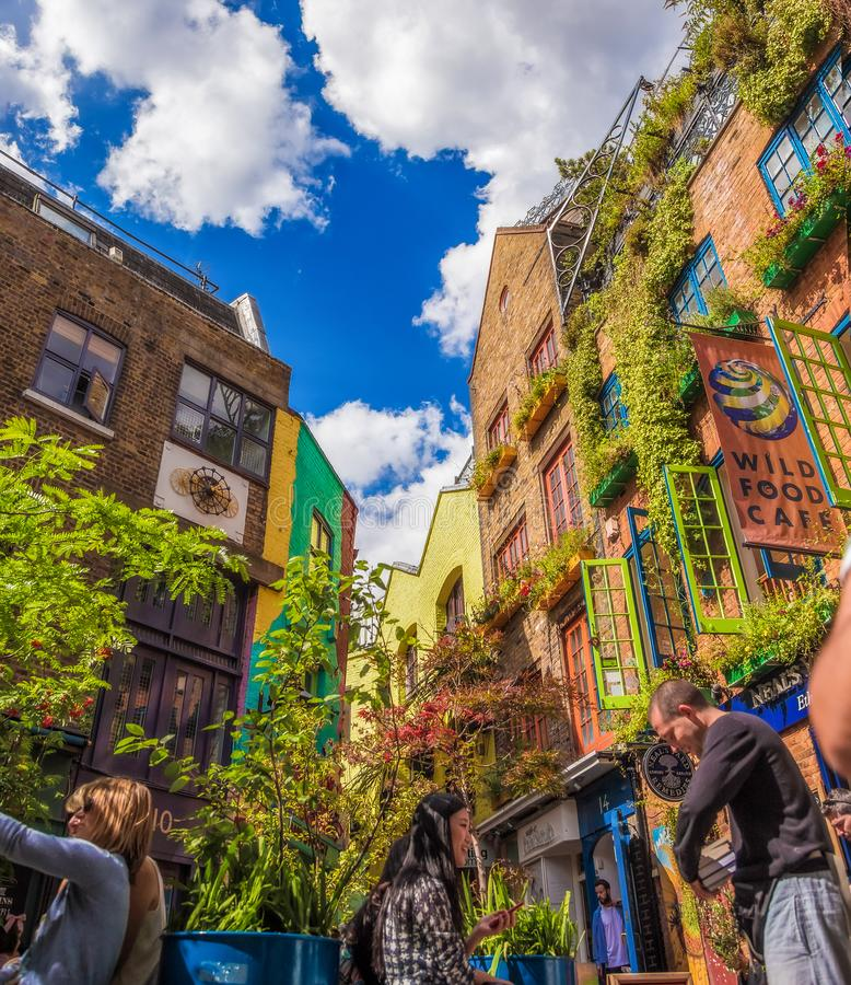 Free Nature Touch In The City Center, Neals Yard In London Stock Photo - 162609040